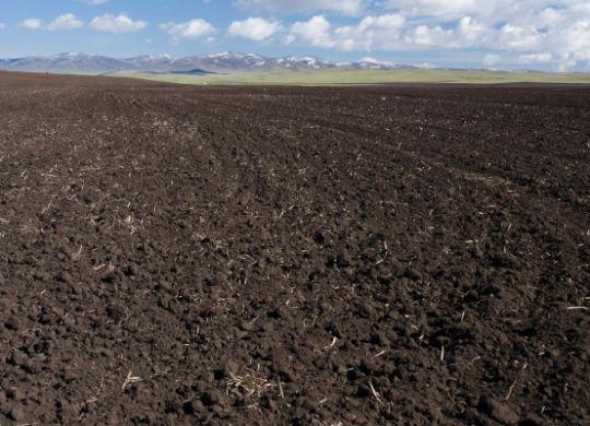 Konsystencja gruntu