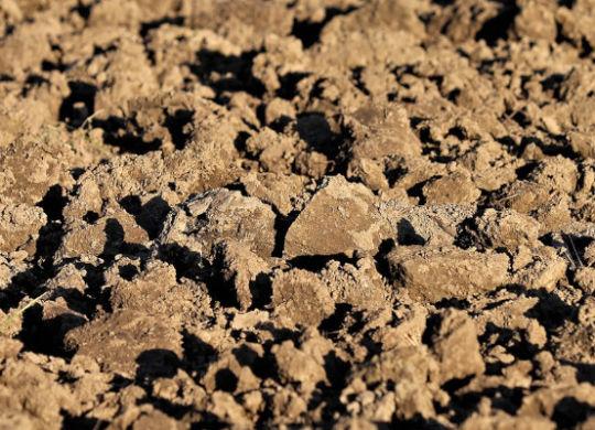 zanieczyszczenia w glebie