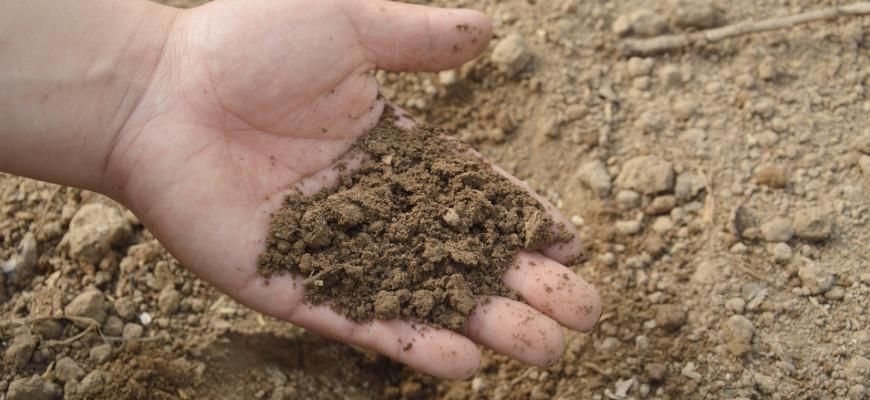 Badanie zanieczyszczenia gruntu i wody
